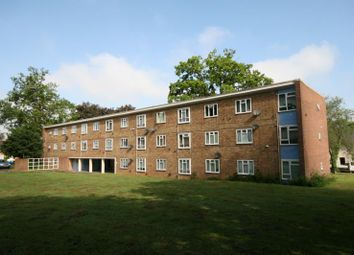 Thumbnail 2 bed flat to rent in The Lawn, Harlow, Essex