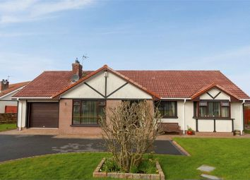 Thumbnail 4 bedroom detached bungalow for sale in Mount Eden, Limavady, County Londonderry