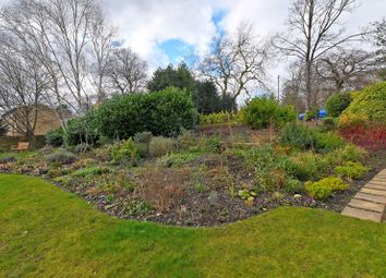 Broomgrove Gardens, 17 Broomgrove Road, Sheffield S10