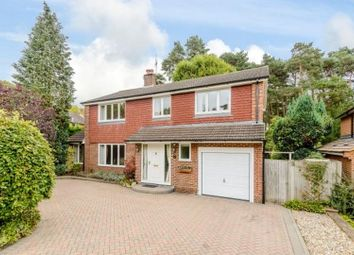 Thumbnail 4 bed detached house to rent in Broadwater Close, Woking