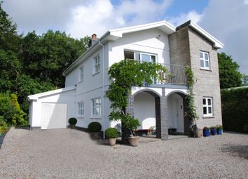 Thumbnail 3 bed detached house for sale in Cwmifor, Llandeilo