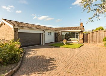 Thumbnail 3 bed bungalow for sale in Cherry Tree Rise, Scotter, Lincolnshire