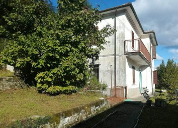 Thumbnail Chalet for sale in 55034 Gorfigliano Lu, Italy