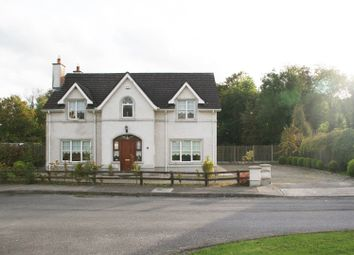 Thumbnail 4 bed detached house for sale in 40 Forge Meadow, Ballykealy, Ballon, Carlow