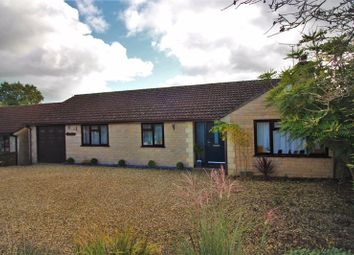 Thumbnail 3 bed detached bungalow for sale in Chaffcombe Road, Chard