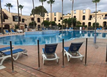 Thumbnail 1 bed apartment for sale in Costa Del Silencio, Arona, Tenerife, Canary Islands, Spain