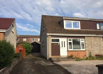 Thumbnail 3 bedroom semi-detached house to rent in Old Halkerton Road, Forfar
