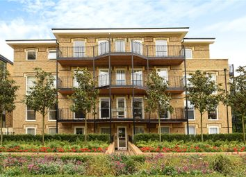 3 bed flat to rent in Theodore Lodge, 7 Chambers Park Hill, Wimbledon Hill Road, London SW20