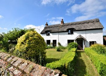 Thumbnail 3 bed detached house for sale in Rectory Road, Weston Longville, Norwich