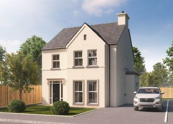 Thumbnail 4 bedroom detached house for sale in 57, Hartley Hall, Greenisland