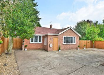 Thumbnail 3 bed detached bungalow for sale in The Street, Great Hockham, Thetford