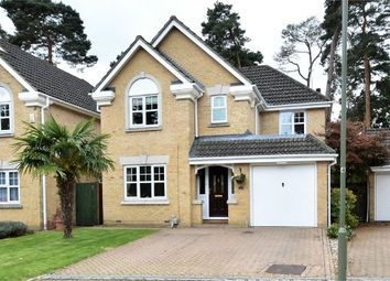Thumbnail 4 bed detached house for sale in Paget Close, Camberley, Surrey