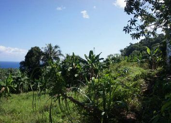 Thumbnail Land for sale in Port Antonio, Portland, Jamaica