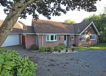 Thumbnail 3 bed detached bungalow for sale in Slab Lane, West Wellow, Romsey