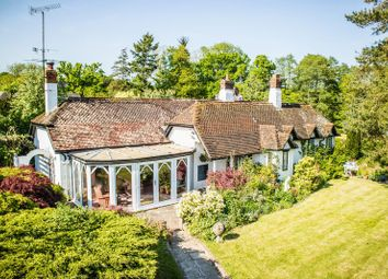 Thumbnail 4 bed cottage for sale in North Common Lane, Landford, Salisbury