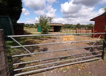 Thumbnail Equestrian property for sale in Cadnam Lane, Cadnam, Southampton