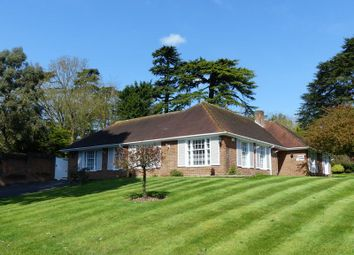 Thumbnail 4 bed detached bungalow for sale in Mill Lane, Taplow, Maidenhead