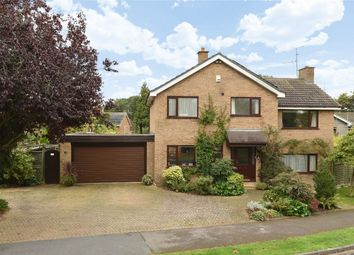 Thumbnail 4 bed detached house for sale in The Bury, Pavenham, Bedford