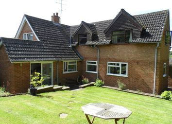 Thumbnail 4 bed detached house to rent in Squirrel Rise, Marlow