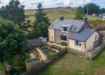Thumbnail 3 bed detached house for sale in Bontnewydd, Aberystwyth