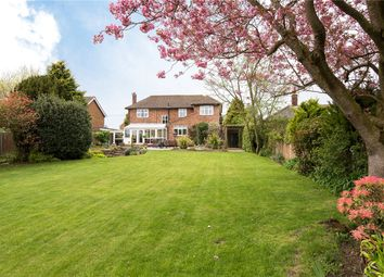 Thumbnail 5 bed detached house for sale in Cucumber Lane, Brundall, Norwich, Norfolk
