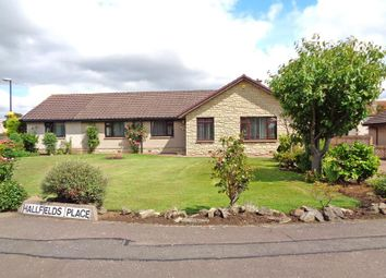 Thumbnail 6 bed detached bungalow for sale in Hallfields Place, Kennoway, Leven