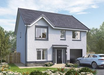 "Thumbnail 4 bedroom detached house for sale in ""The Rosebury"" at Brora Crescent, Hamilton"