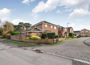 Thumbnail 4 bed detached house for sale in Teal Close, Hayling Island