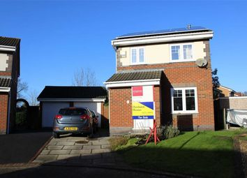 Thumbnail 3 bedroom detached house for sale in Greenmead Close, Cottam, Preston