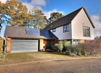 Thumbnail 4 bed detached house for sale in Littlewood, Norwich