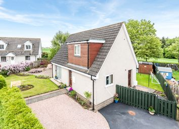 Thumbnail 4 bed detached house for sale in Golf Road Park, Brechin, Angus
