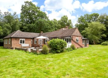Thumbnail 4 bed detached bungalow for sale in Broad Lane, Newdigate, Dorking, Surrey