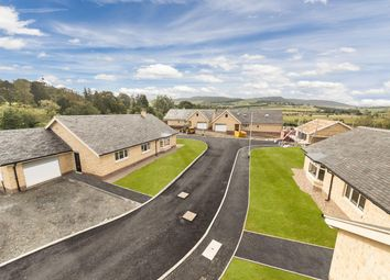 Thumbnail 4 bed detached bungalow for sale in Burnside, Thropton, Morpeth, Northumberland