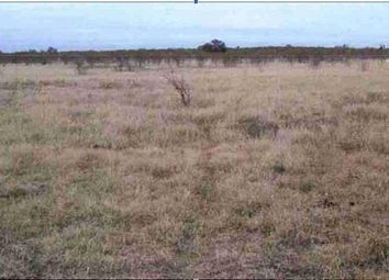 Thumbnail Land for sale in Moore, Texas, 78057, United States Of America