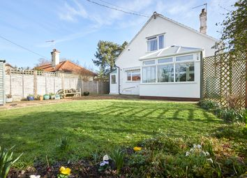 Thumbnail 3 bed detached house for sale in Candlers Lane, Redenhall, Harleston