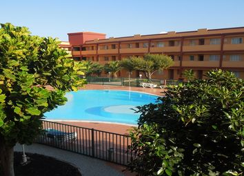 Thumbnail 2 bed apartment for sale in Parque Holandes, Fuerteventura, Spain