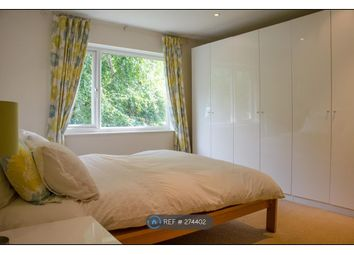 Thumbnail Room to rent in Bannerdale Road, Sheffield