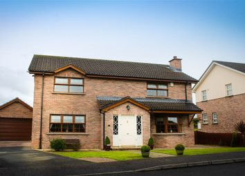 Thumbnail 3 bed detached house for sale in Hilltown, Newry