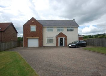 Thumbnail 4 bed detached house for sale in Cornsay Colliery, Durham