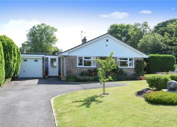 Thumbnail 3 bed detached bungalow for sale in St. Marys Close, Winterborne Whitechurch, Blandford Forum