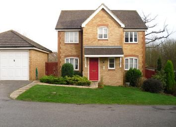 Thumbnail 4 bed detached house to rent in Forest Avenue, Ashford, Kent