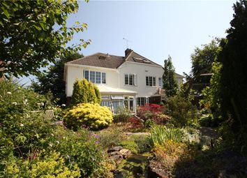 Thumbnail 4 bed detached house for sale in Letton Close, Blandford Forum, Dorset