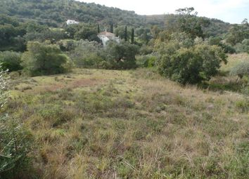 Thumbnail Land for sale in 2045, São Brás De Alportel, East Algarve, Portugal