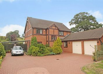 Thumbnail 4 bed detached house for sale in Hafod Close, Oswestry