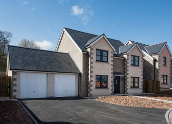 Thumbnail 4 bedroom detached house for sale in Plot 28, Peelwalls Meadows, Eyemouth