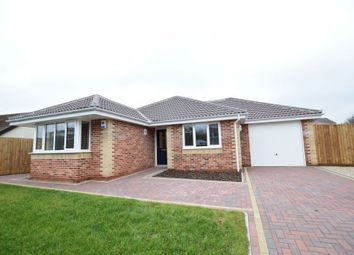 Thumbnail 3 bed detached bungalow for sale in Butchers Lane, Walton On The Naze