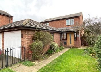 Thumbnail 4 bed property to rent in Pilgrims Way, Ely