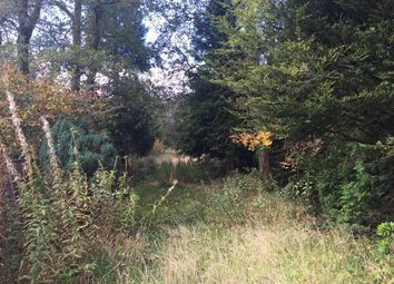 Thumbnail Land for sale in Llandovery Road, Llanwrtyd Wells, Powys