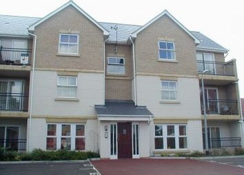 Thumbnail 2 bed flat to rent in Hakewill Way, Colchester, Essex