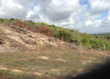 Thumbnail Land for sale in Genipabu, Rio Grande Do Norte, Brazil